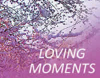 Loving Moments, Gauteng wedding, function and conference venues